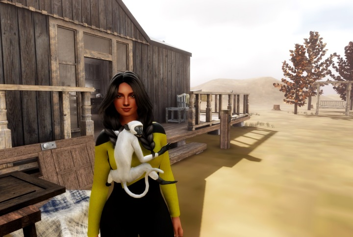 AVATARS changing in Sansar